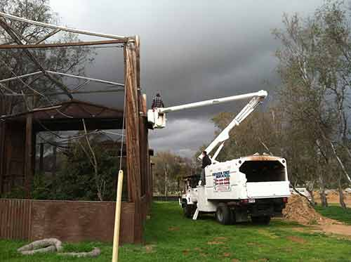 Fallbrook Tree Services