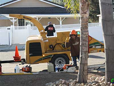 Estates Tree Service Owner Giving Thumbs Up With a Tree Chipper in the background